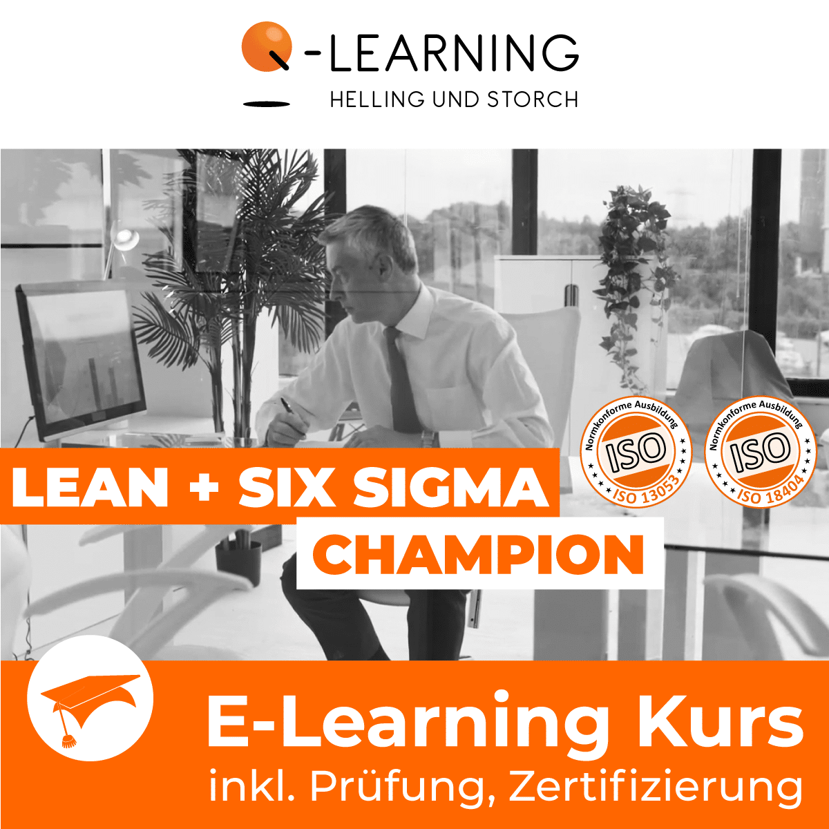 Produktbild LEAN + SIX SIGMA CHAMPION E-Learning Kurs