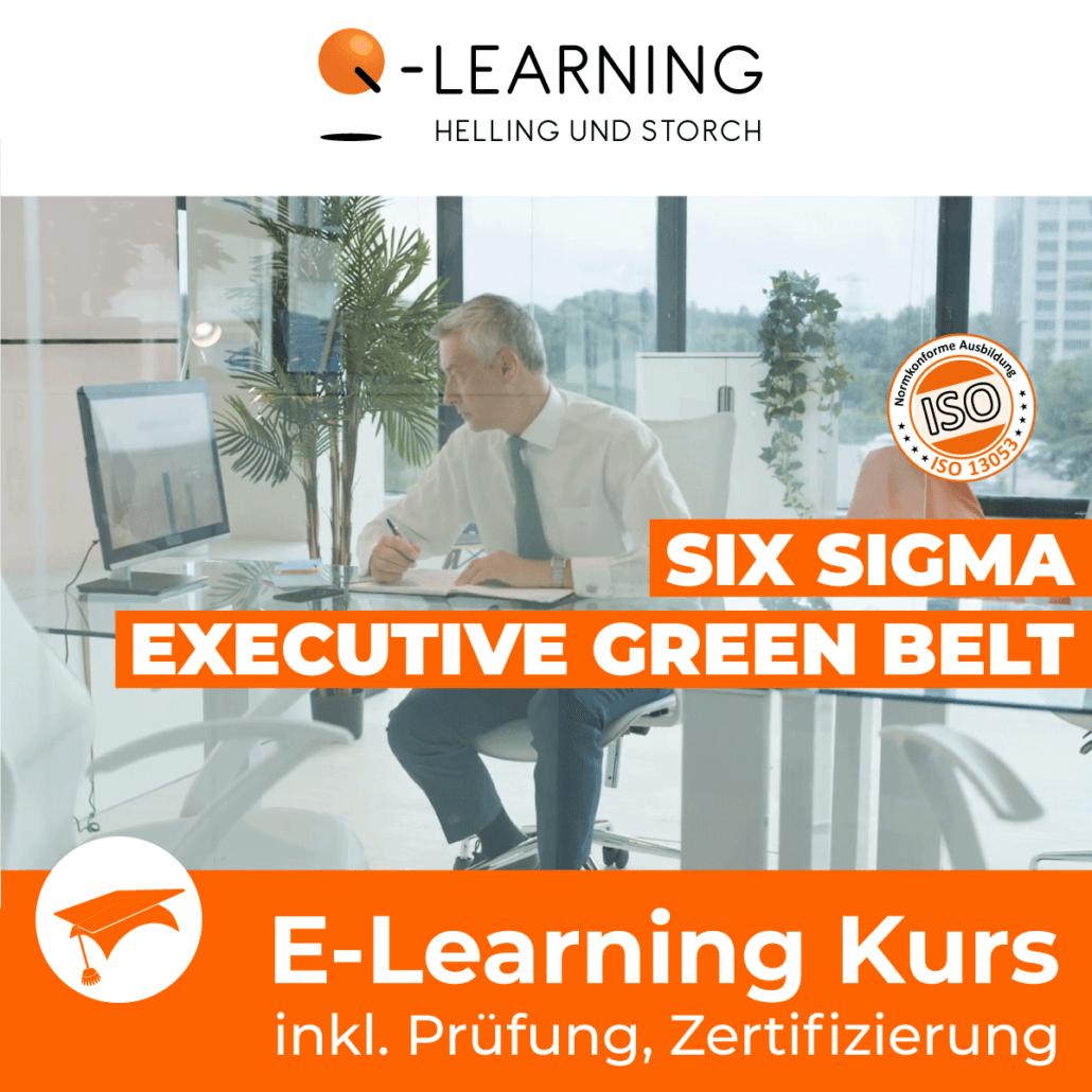 Produktbild SIX SIGMA EXECUTIVE GREEN BELT E-Learning Kurs