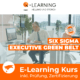 SIX SIGMA EXECUTIVE GREEN BELT E-Learning