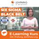 SIX SIGMA BLACK BELT E-Learning BFD