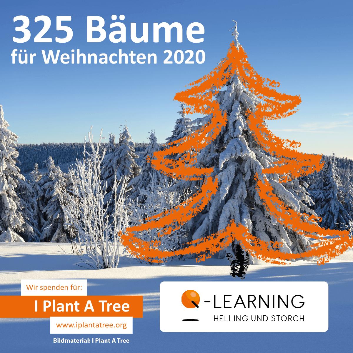 Q-LEARNING | I Plant A Tree Projekt Weihnachten 2020