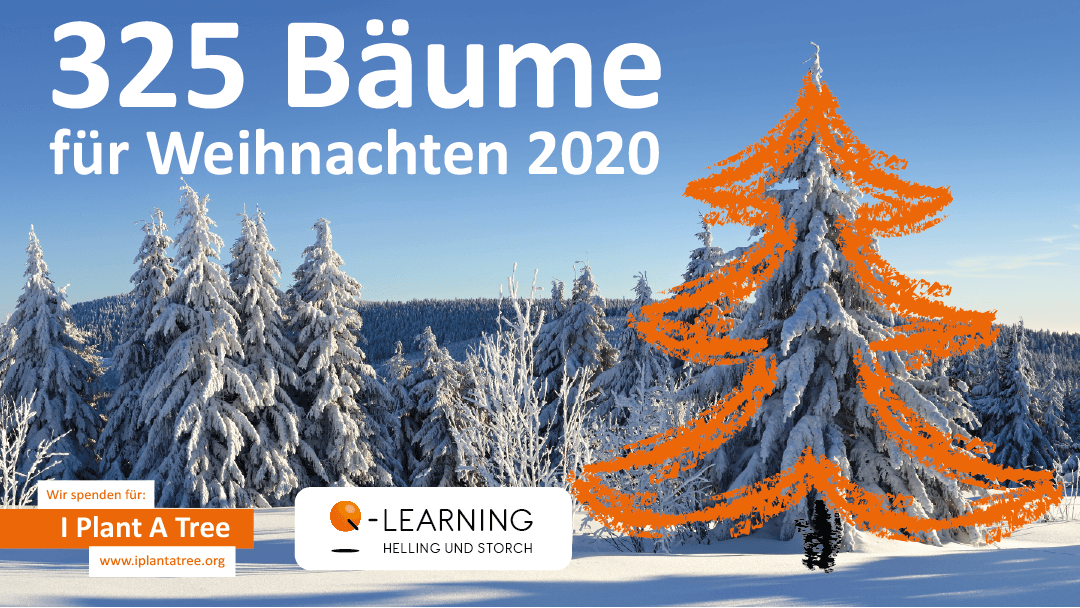Q-LEARNING I Plant A Tree Weihnachtsprojekt
