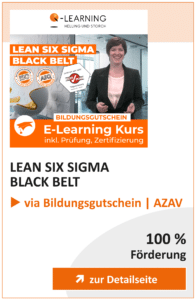Produktbox LEAN SIX SIGMA Black Belt AZAV