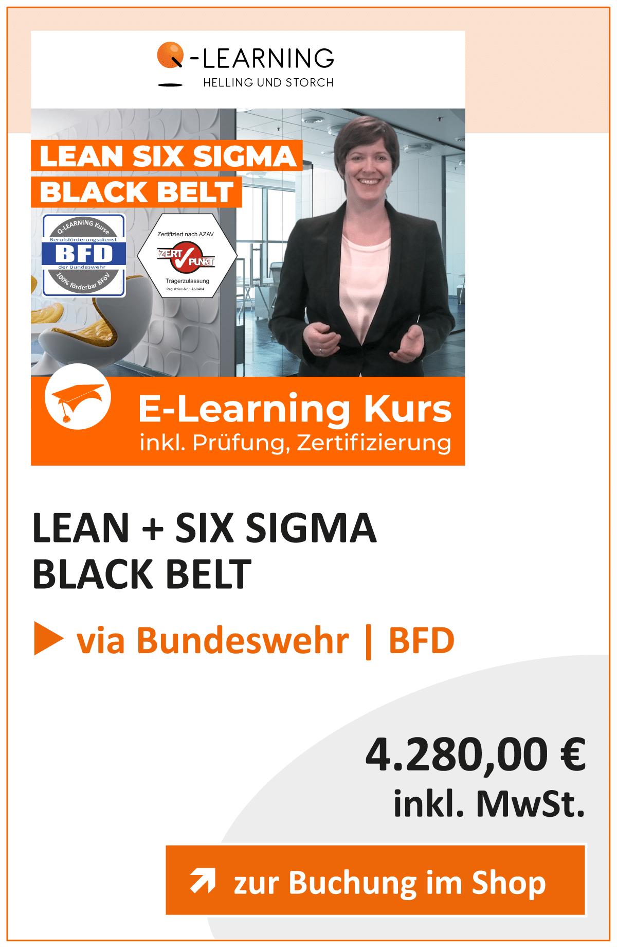 Produktbox LEAN SIX SIGMA Black Belt BFD
