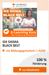 Produktbox SIX SIGMA Black Belt AZAV