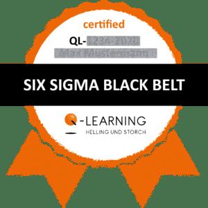 Q-LEARNING Badge Siegel SIX SIGMA Black Belt Webdemo